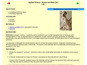 Science and Math Lab (Students Look at Symmetry in Nature) Lesson Plan
