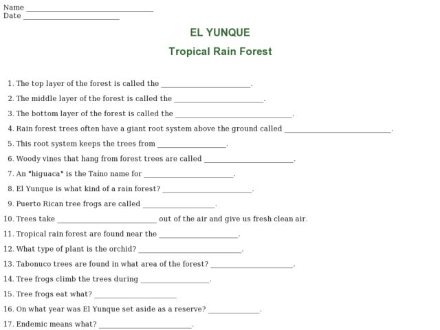 El Yunque--Tropical Rain Forest Worksheet for 3rd - 4th ...