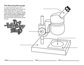 The Dissecting Microscope Worksheet for 5th - 6th Grade