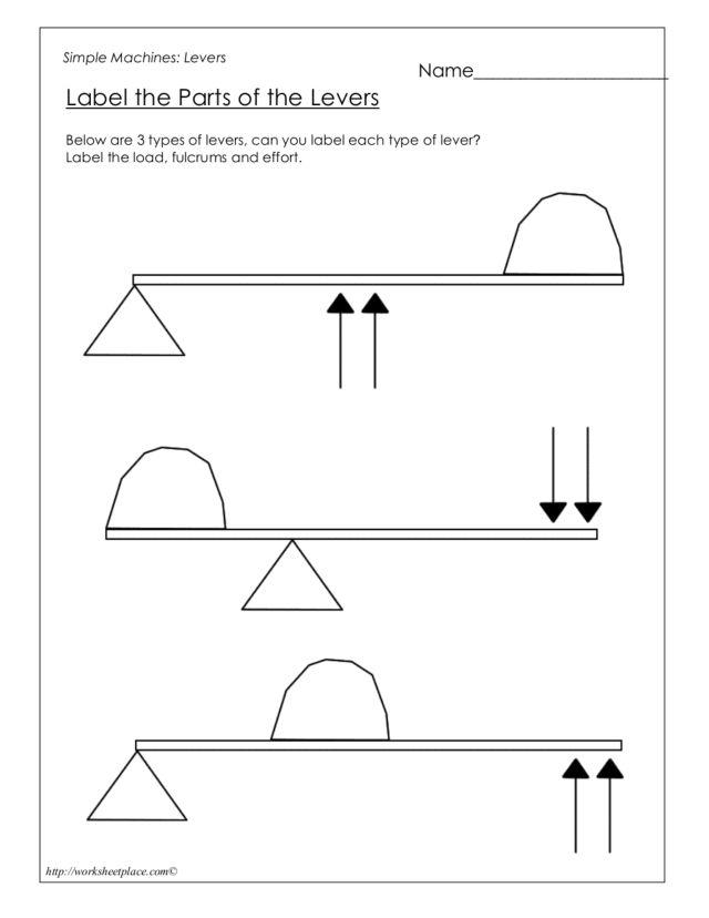 Simple MachinesLevers 4th 6th Grade Worksheet – Types of Levers Worksheet