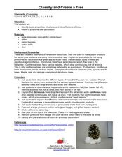 Classify and Creat a Tree Lesson Plan