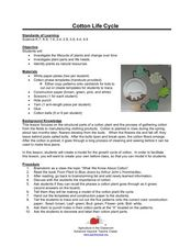 Cotton Life Cycle Lesson Plan