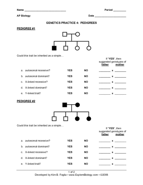 Pedigree worksheet middle school answers