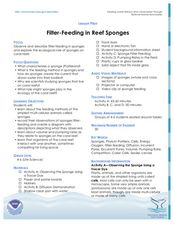 Filter-Feeding in Reef Sponges Lesson Plan