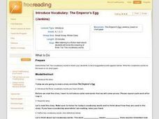 Introduce Vocabulary: The Emperor's Egg Lesson Plan