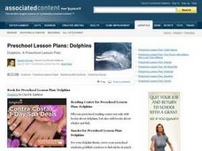 Preschool Lesson Plans: Dolphins Lesson Plan