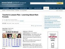 Learning About Rain Forests Lesson Plan