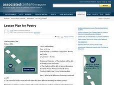 ELD Poetry: When I Taste Salt Lesson Plan