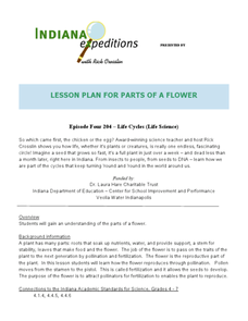 Lesson Plan for Parts of a Flower Lesson Plan