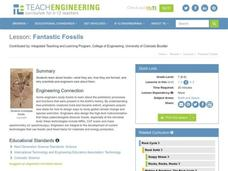 Fantastic Fossils Lesson Plan