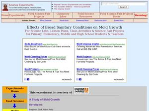 Effects of Bread Sanitary Conditions on Mold Growth Lesson Plan