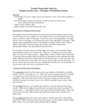 Dragon Genetics Worksheet Answer Key - Promotiontablecovers