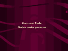 Coasts and Reefs: Shallow Marine Processes Presentation
