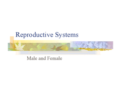 Reproductive Systems - Male and Female Presentation