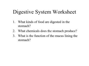 digestive system worksheet worksheet for 5th 8th grade lesson planet. Black Bedroom Furniture Sets. Home Design Ideas
