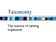 Taxonomy - The Science of Naming Organisms Presentation
