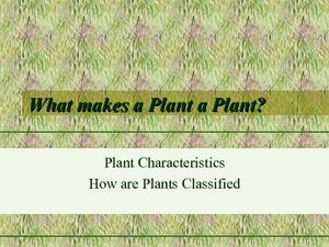 What Makes a Plant a Plant? Presentation
