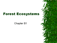 Forest Ecosystems Presentation