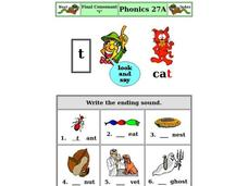 "Final Consonant ""t"" Worksheet"