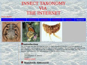 INSECT TAXONOMY VIA  THE INTERNET Lesson Plan