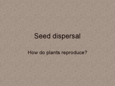 Seed Dispersal: Plant Reproduction Presentation