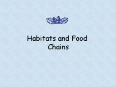 Habitats and Food Chains Presentation