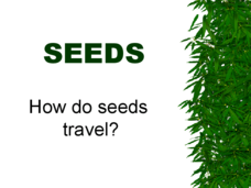 how seeds travel lesson plans worksheets reviewed by teachers. Black Bedroom Furniture Sets. Home Design Ideas
