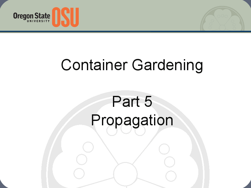 Container Gardening Part 5: Propagation Presentation