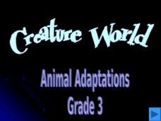 Creature World - Animal Adaptations Presentation