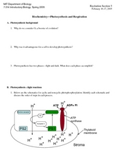 Biochemistry - Photosynthesis and Respiration Worksheet