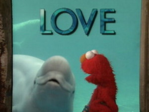 Elmo And Whale: Love Video
