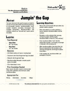 Jumpin' the Gap Lesson Plan