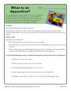 What is an Appositive? Worksheet