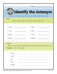 Identify the Antonym Worksheet