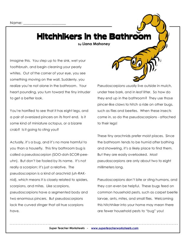 Hitchhikers in the Bathroom 3rd 6th Grade Worksheet – Super Teacher Worksheets Reading Comprehension