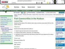 Fish Communities in the Hudson Lesson Plan