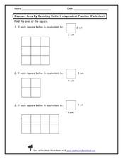 Measure Area by Counting Worksheet