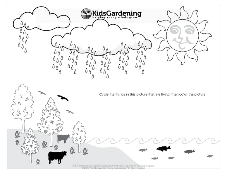 Living Things Coloring Page Printables & Template