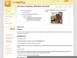 Introduce Vocabulary: Black Bear Cub (Lind) Lesson Plan