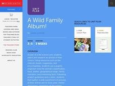 A Wild Family Album! Lesson Plan