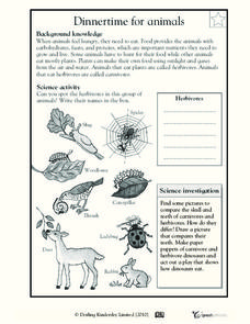 Dinnertime for Animals Worksheet