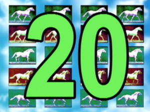 Horses Count To 20 Video