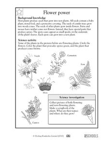 Flower Power Worksheet