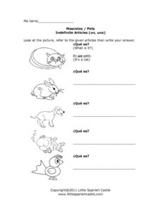 Mascotas/ Pets and Indefinite Articles Worksheet