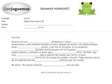 Adjectives and Nouns  Worksheet