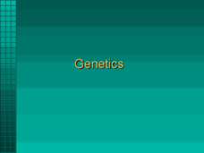 Genetics PowerPoint Presentation
