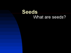 Seeds - What are Seeds? Presentation