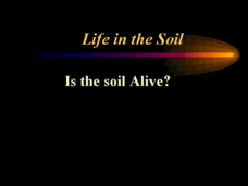 Life in the Soil - Is the Soil Alive? Presentation
