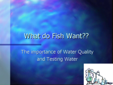 What Do Fish Want? Presentation