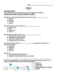 case study catalase activity worksheet